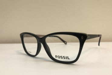Rame Fossil